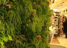 2. centro commerciale il fiordaliso