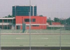 12. sportivo